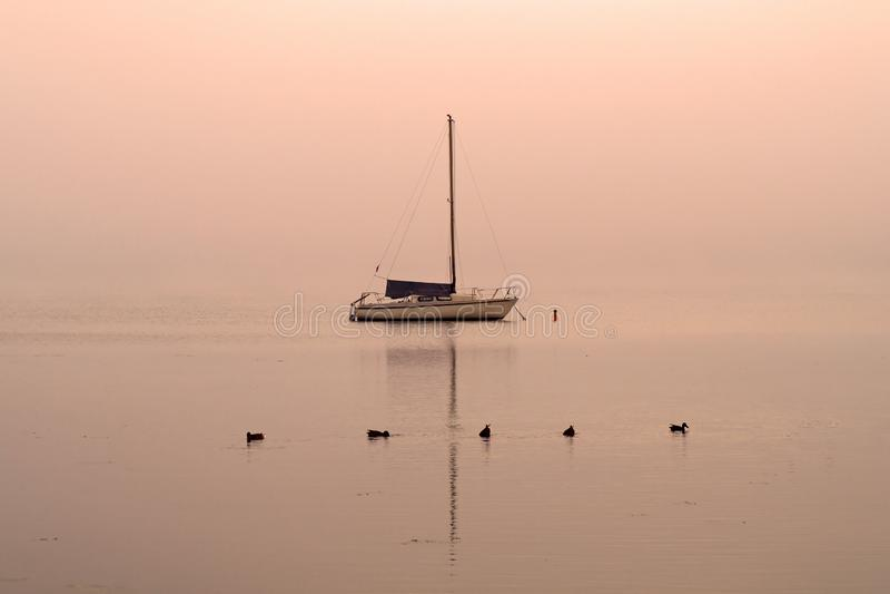 Gryning på sjön med ett fartyg och änder royaltyfri foto