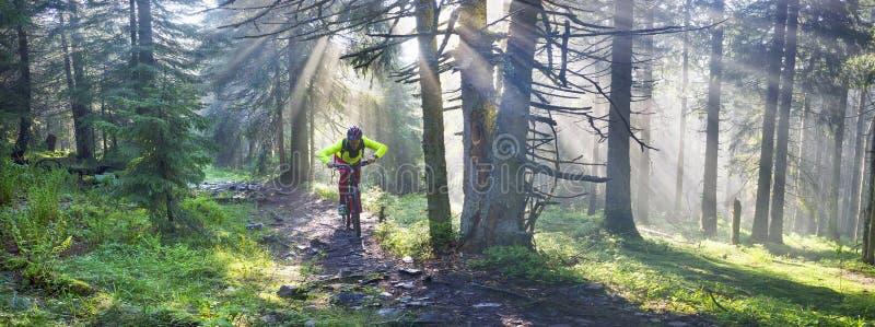 Gryning rays att cykla för berg arkivfoto