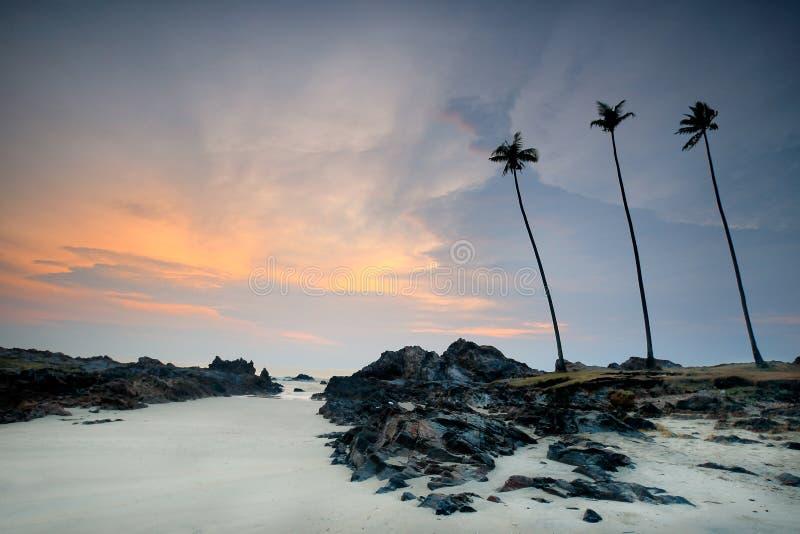 Gryningsikt av sandstranden med rocks royaltyfri bild