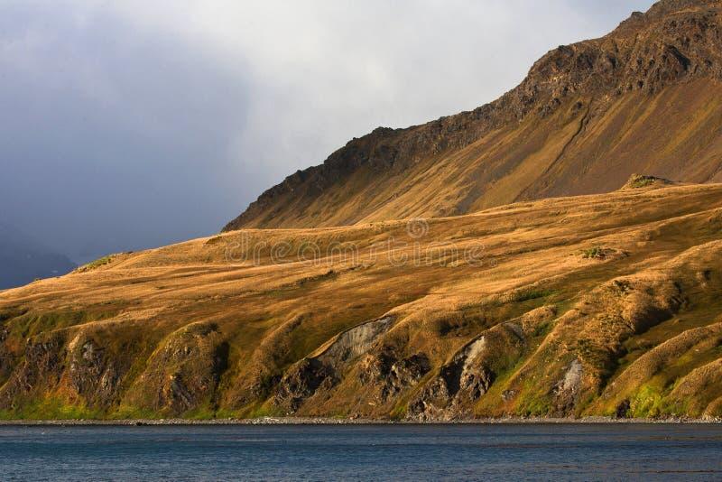 Grytviken Zuid la Géorgie, Grytviken la Géorgie du sud image libre de droits