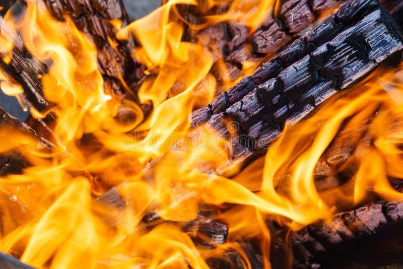 Grzebień płomień na płonącym drewnie w grabie obrazy royalty free