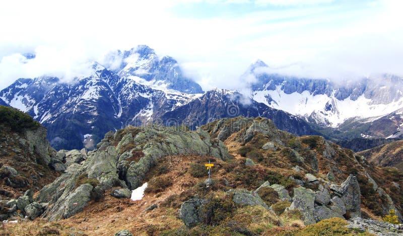 Grzebienia ślad na szczycie alps (lesachtal) zdjęcie royalty free