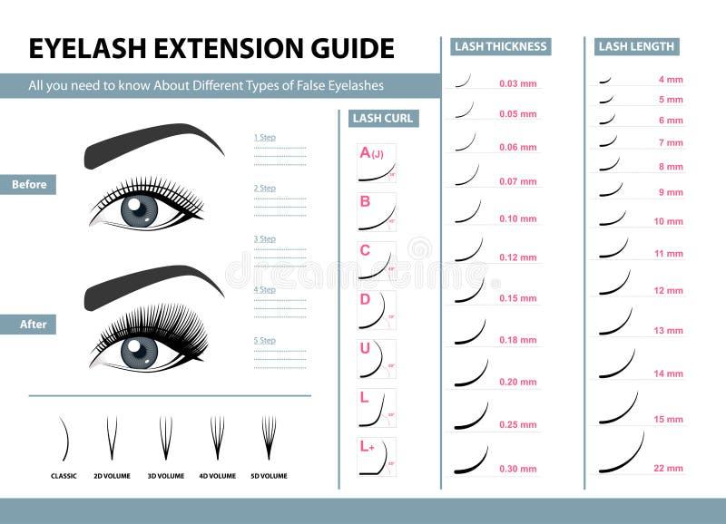 Guía de la extensión de la pestaña Diversos tipos de pestañas falsas Ejemplo del vector de Infographic Plantilla para el maquilla stock de ilustración