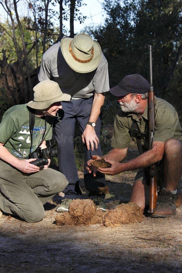 Guía del safari con los turistas y el estiércol del elefante fotografía de archivo