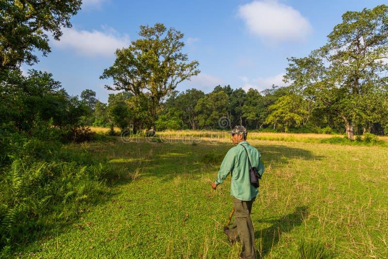 Guía en un paseo en la selva en el parque nacional de Chitwan fotografía de archivo