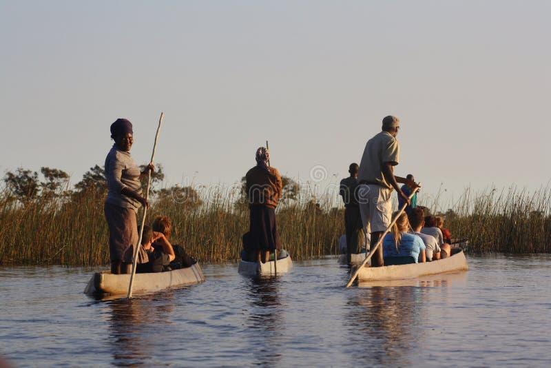 Guías y turistas en el Okavangodelta imagen de archivo