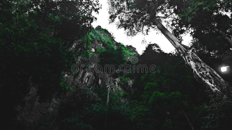 Gua-cheras Höhle stockfotografie