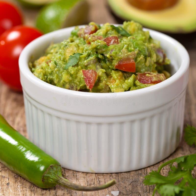 guacamole στοκ εικόνα