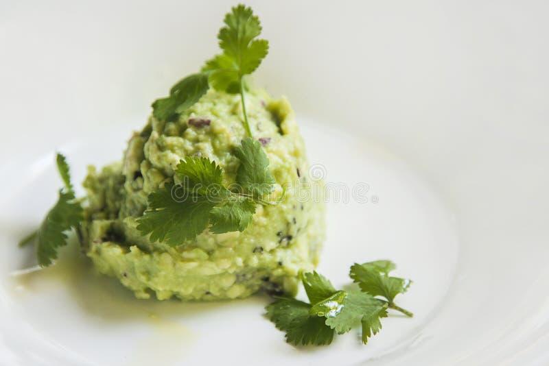 guacamole photo stock