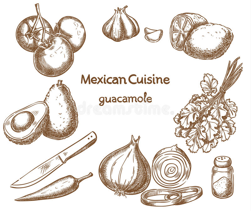 Guacamole, ingredienti dell'alimento illustrazione vettoriale