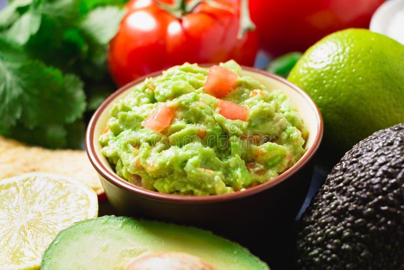 Guacamole med ingredienser royaltyfri bild