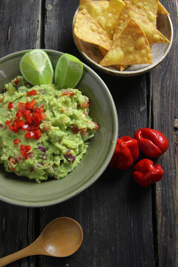 Guacamole och hemlagade nachos royaltyfri bild
