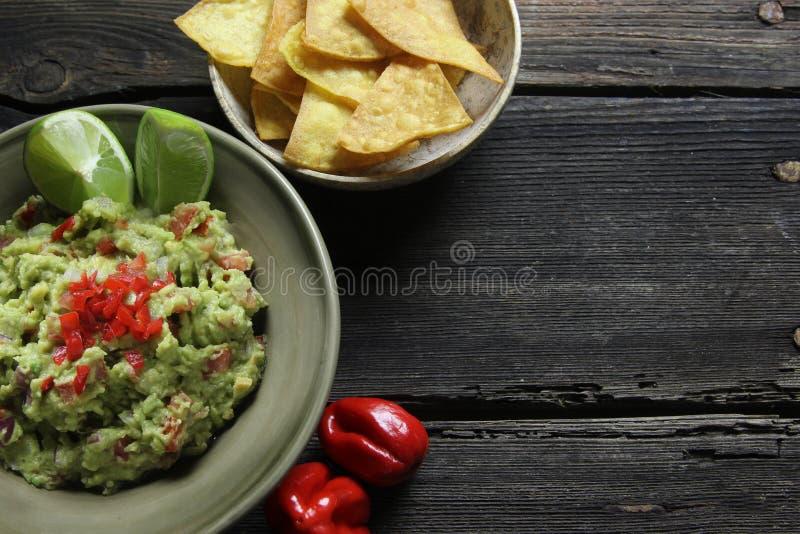 Guacamole och hemlagade nachos royaltyfria bilder