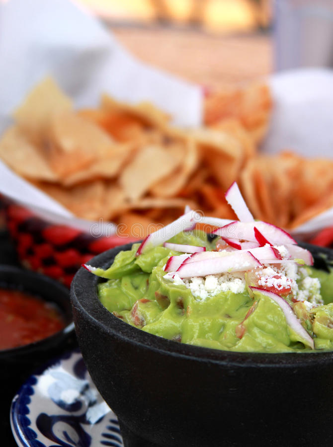 Free Guacamole, Salsa And Chips Stock Images - 21758874