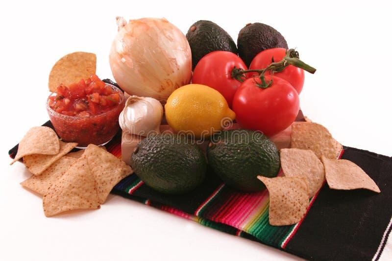 guacamoleingredienser royaltyfria bilder