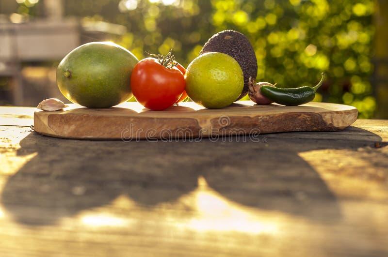 Guacamoleingredienser i solljus royaltyfri foto