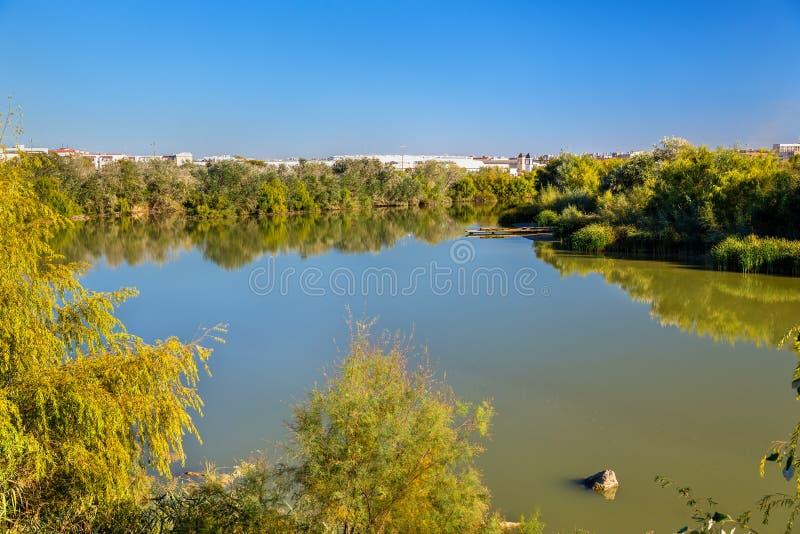The Guadalquivir river in Cordoba, Spain. The Guadalquivir river in Cordoba - Spain, Andalusia royalty free stock image
