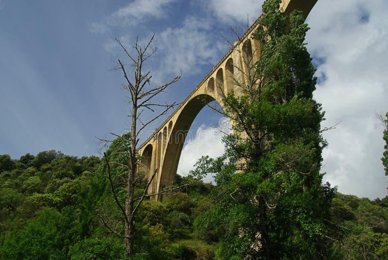 Guadalupe桥梁 免版税库存图片