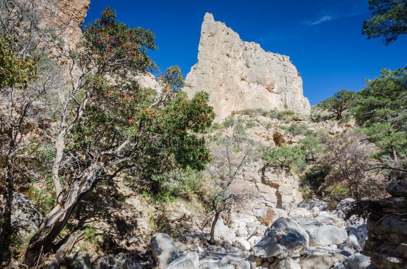 Guadalupe gór krajobraz - Teksas zdjęcie stock