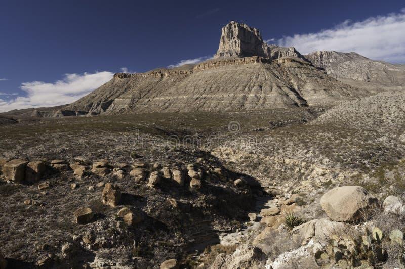 Guadalupe gór park narodowy w zimie obrazy royalty free