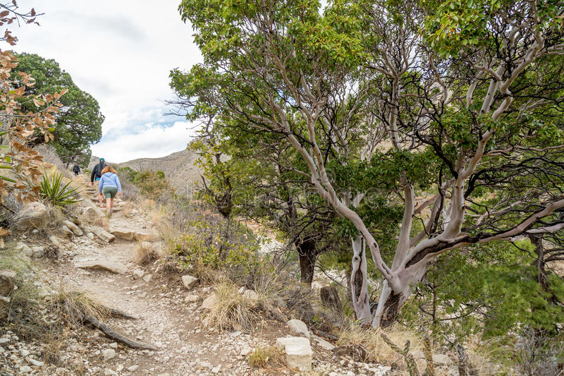Guadalupe góry Teksas fotografia stock
