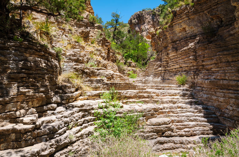 Guadalupe Mountains National Park. Trail royalty free stock image
