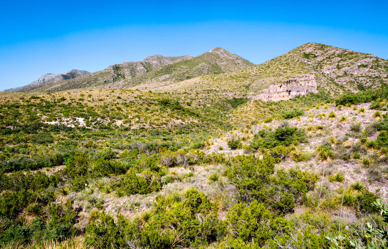 Guadalupe Mountains National Park. View royalty free stock image