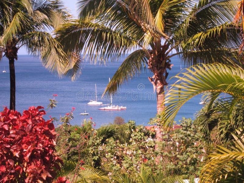 Guadeloupe sikt arkivbild