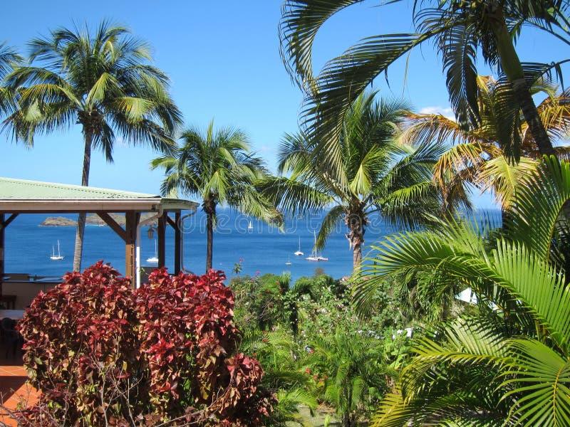Guadeloupe sikt royaltyfria foton