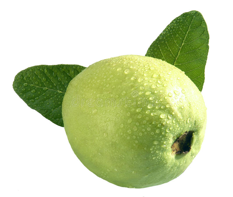 Guajava-Frucht lizenzfreies stockbild