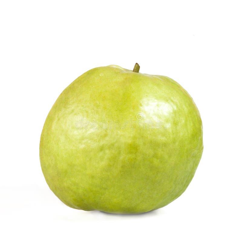 Guajava-Frucht lokalisiert auf Weiß lizenzfreie stockfotos