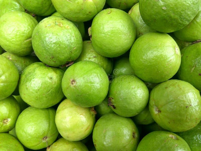 guajava Neue Guavenhintergrundbeschaffenheit lizenzfreie stockfotos