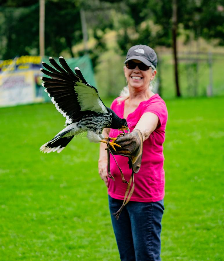 Gualaceo, Ecuador / June 1, 2018: A woman holds a bird of prey a royalty free stock photography