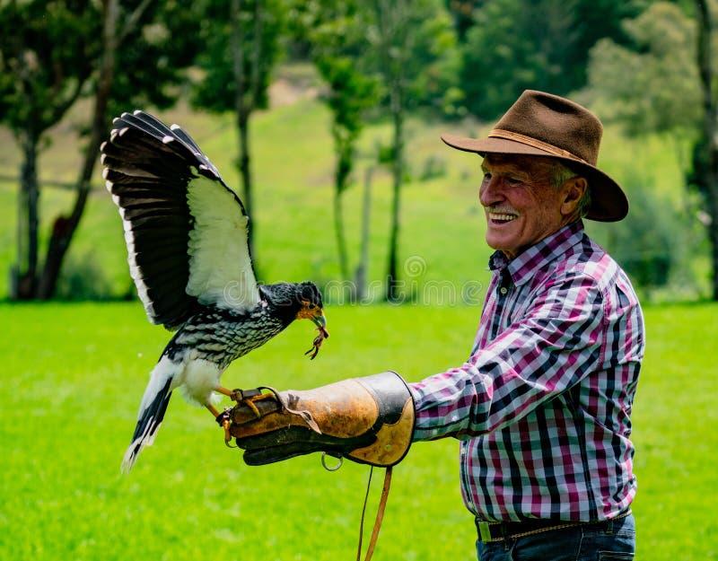 Gualaceo, Equateur/le 1er juin 2018 : Un homme tient un oiseau de proie à image libre de droits