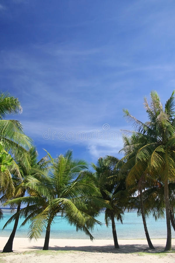 Download Guam background stock image. Image of blue, beach, sunny - 12610859