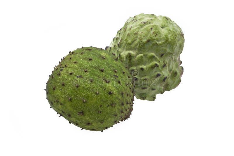 Guanábana orgánica y frutas de la anona aisladas en el fondo blanco fotografía de archivo libre de regalías