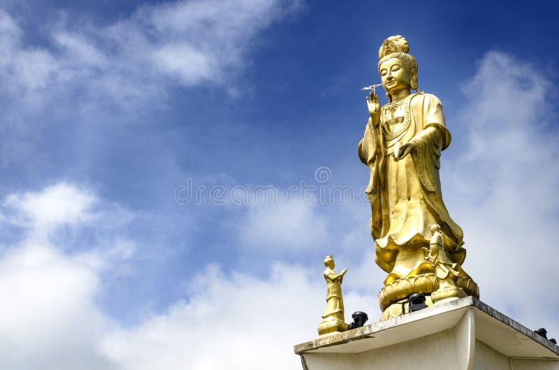 'Guan Yin', dea di pietà, statua dorata della bodhisattva in Trang, Tailandia immagine stock