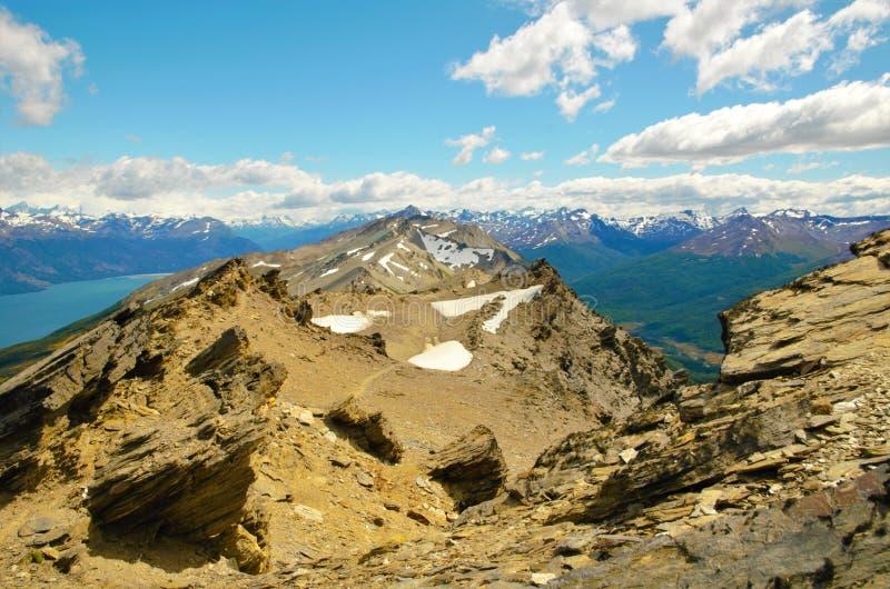 Guanaco de Cerro en Tierra del Fuego image stock