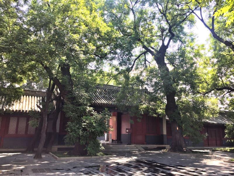 Guangji Temple royalty free stock image