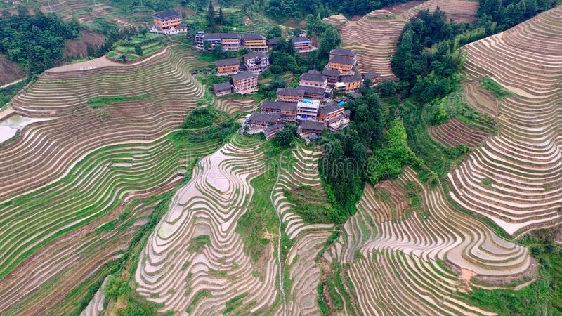 Guangxi Guilin drakes baksida royaltyfri foto