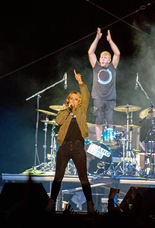 Guano Apes Concert stock photography