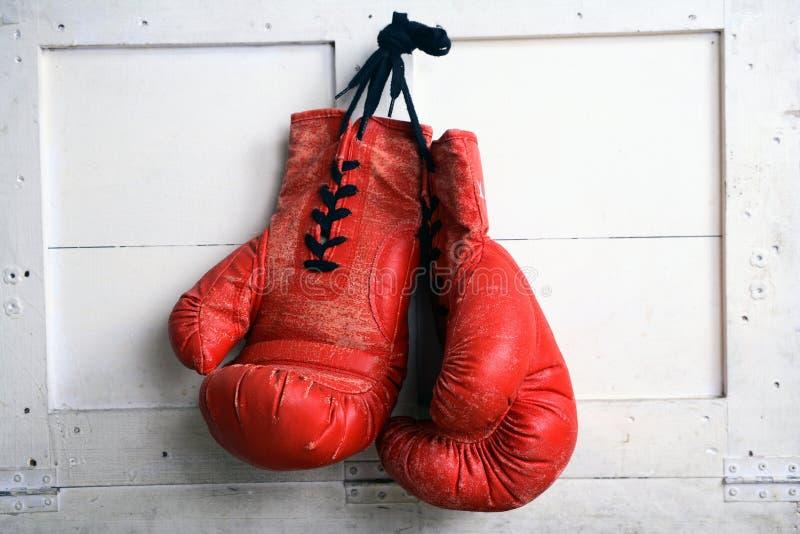 Guante de boxeo foto de archivo libre de regalías