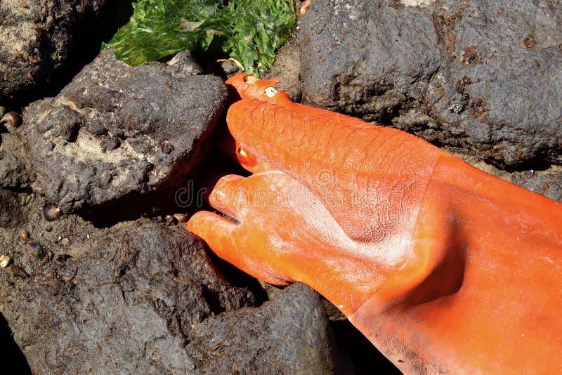 Guante de trabajo anaranjado lavado en el malecón basáltico fotos de archivo