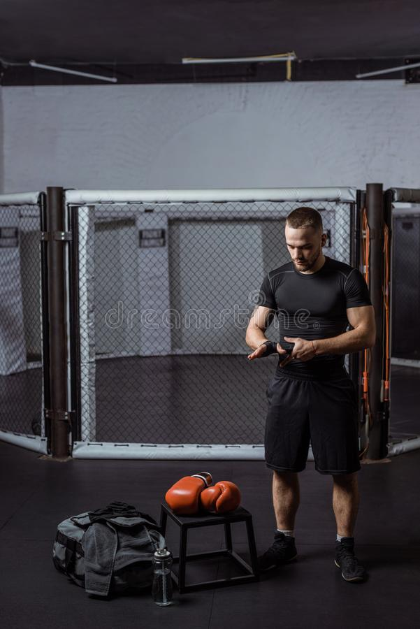 Guantes de boxeo del boxeador que llevan foto de archivo