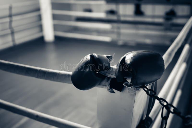 Guantes de boxeo en el anillo imágenes de archivo libres de regalías