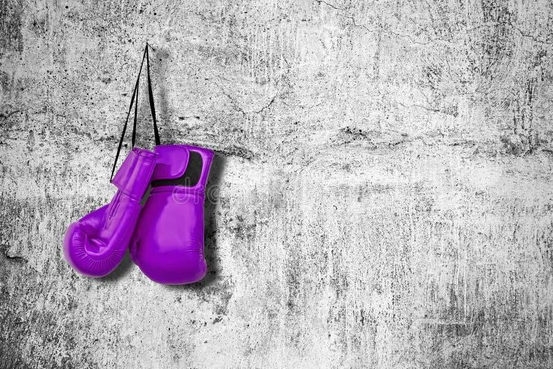 Guantes de boxeo en la pared foto de archivo libre de regalías