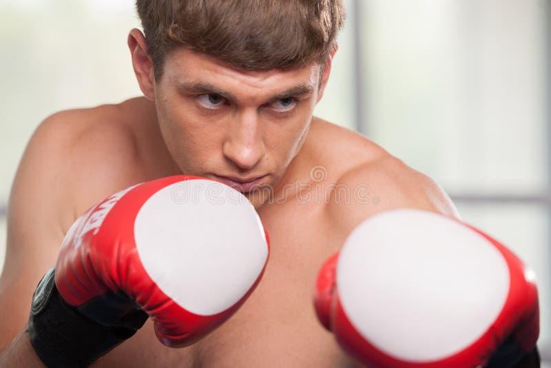 Guantes de boxeo musculares hermosos del hombre que llevan joven foto de archivo
