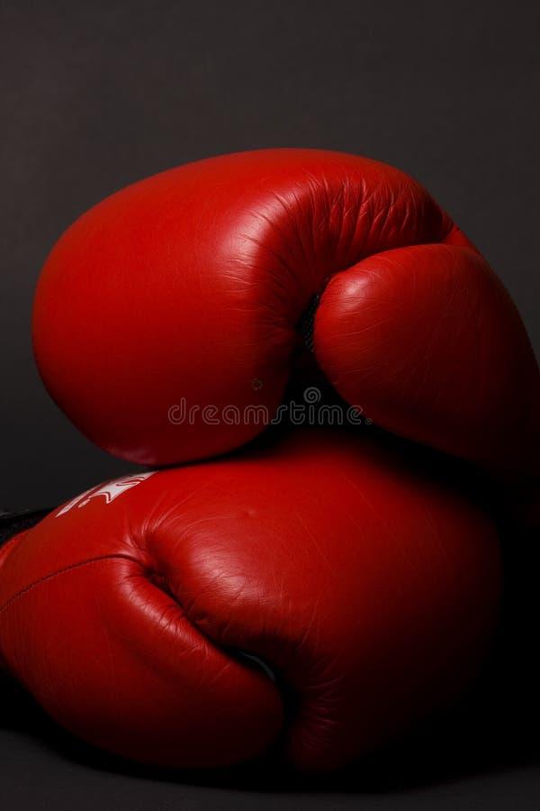 Download Guanti Di Inscatolamento Rossi Immagine Stock - Immagine di left, boxer: 7324483