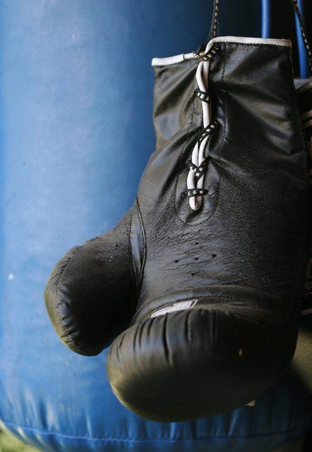 Guanto e sacchetto di inscatolamento fotografia stock