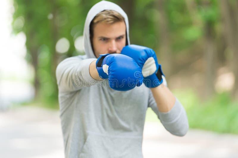 Guantoni da pugile di formazione concentrati sportivo L'atleta ha concentrato la natura di abilità di combattimento di pratica de immagini stock libere da diritti